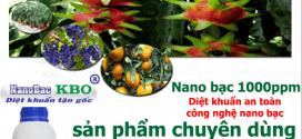 Tìm đại lý bán sản phẩm Nano bạc 1000 ppm – Diệt nấm, vi khuẩn phòng và trị bệnh cho cây trồng