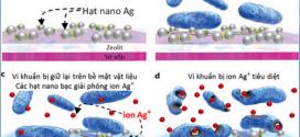 Tại sao nano bạc lại diệt khuẩn mạnh?